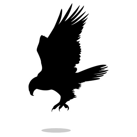 Hawk eagle falcon bird black silhouette animal Imagens - 84478906