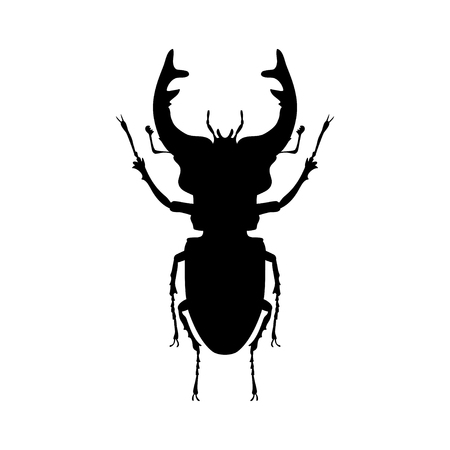 Stag insect black silhouette animal. Vector Illustrator.