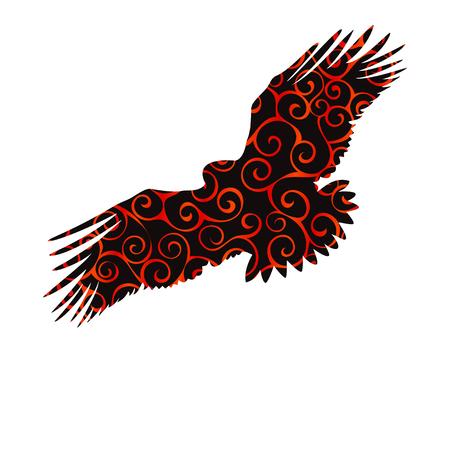 Eagle hawk golden eagle bird spiral pattern color silhouette ani