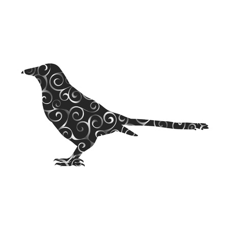 Magpie bird spiral pattern color silhouette animal