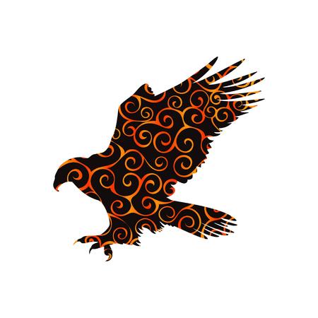 Hawk eagle falcon bird spiral pattern color silhouette animal