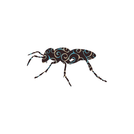 Ant insect spiral pattern color silhouette animal.