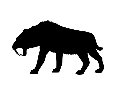 Saber toothed tiger silhouette extinct mammalian animal. Vector illustration