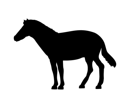 Horse silhouette extinct mammalian animal