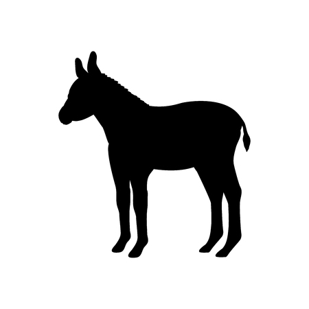 Baby donkey farm mammal black silhouette animal. Vector Illustrator.