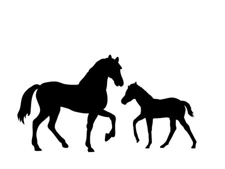 Cheval et poulain ferme mammifère animal silhouette noire Vecteurs