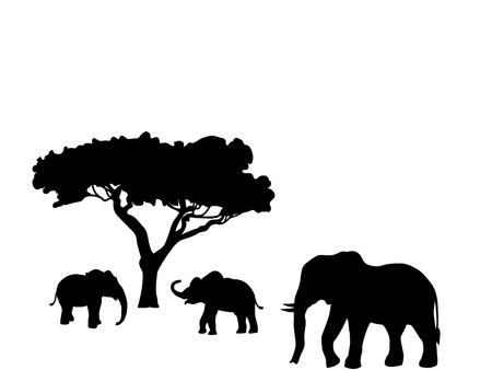 Elephant and two elephant calf mammal black silhouette animal