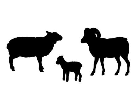 Widder Schaf Lamm Bauernhof Säugetier schwarze Silhouette Tier Vektorgrafik