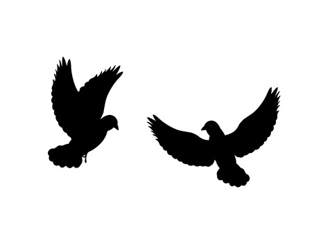 Pigeons bird  black silhouette animal. 矢量图像
