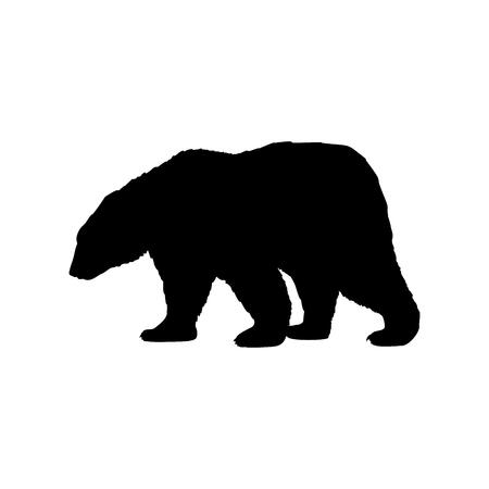 Brown bear wild black silhouette animal