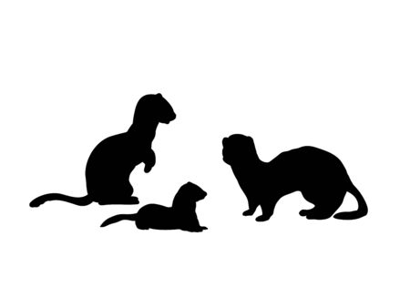 Ferrets family. Silhouettes of animals