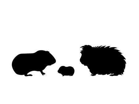 Guinea pig family. Silhouettes of pet animals Illustration