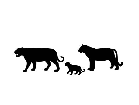 Tiger family. Silhouettes of animals Vectores