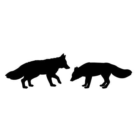 Silhouette of two foxes. The fox family. Vector illustrator Çizim