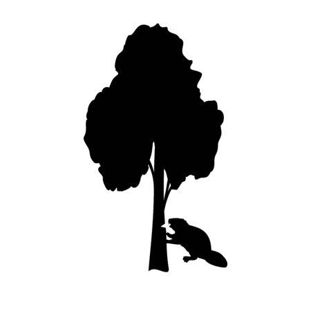 Silhouette of beaver gnawing tree. Animal wildlife. Vector illustrator Illustration