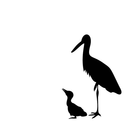 Silhouette of stork with chick. Vector illustrator