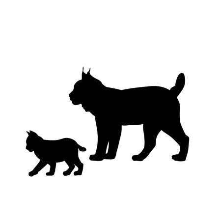 Silhouette of Lynx and young little Lynx. Vector illustrator