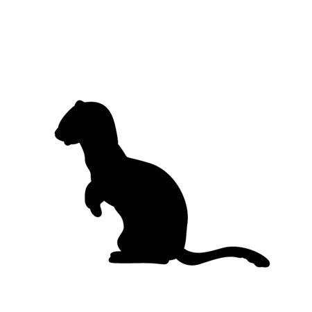 Weasel ferret silhouette. An animal of the marten family. Vector illustrator