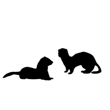 Silhouette of two Weasels and a ferret. An animal of the marten family. Vector illustrator Çizim