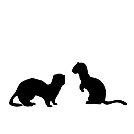 Silhouette of two Weasels and a ferret. An animal of the marten family. Vector illustrator Illustration