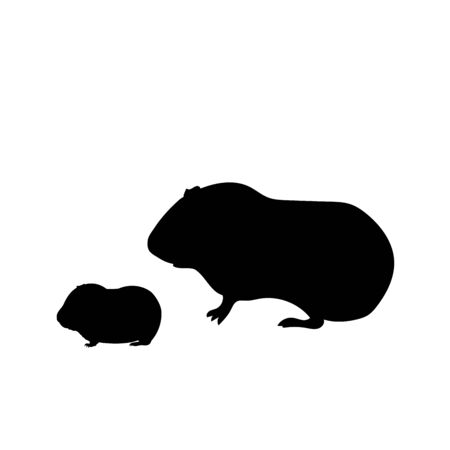 Silhouette of Guinea pig and young little Guinea pig Иллюстрация