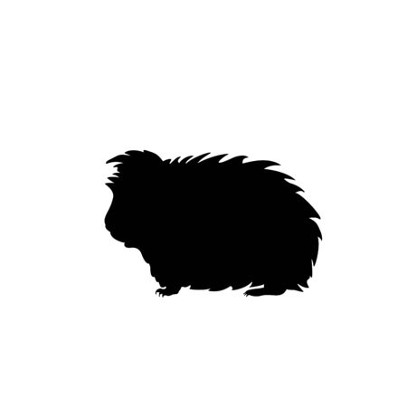Silhouette Guinea pig. Domestic animal rodent. Vector illustrator Illustration