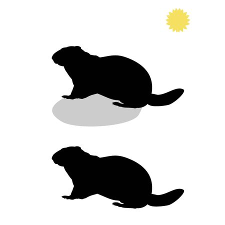 Holiday Groundhog Day. Falling shadow prediction of spring. Vector illustrator