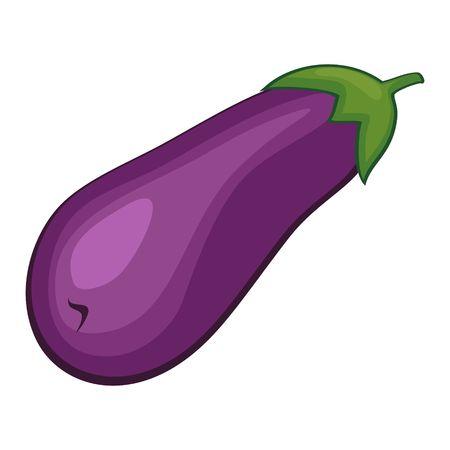 aubergine: Vector eggplant