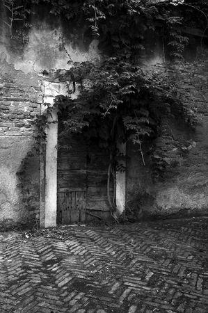 Venice Wooden Door Stock Photo - 8207969