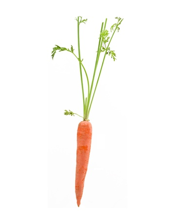 intact: A carrot with its leaves intact.