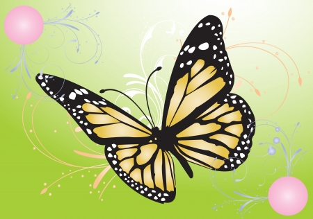 digitally generated image: Digitally generated image of a butterfly with green background.