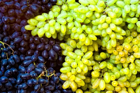 bunches: Purple and green grape bunches sitting beside each other in Mysore, India.