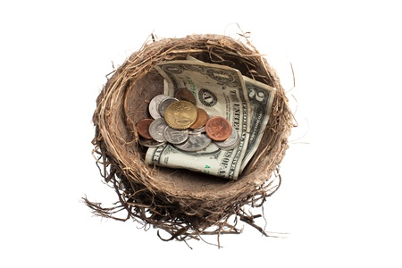 Close-up shot of bird's nest with paper currency and metal coins over white background. Stock Photo - 15543146