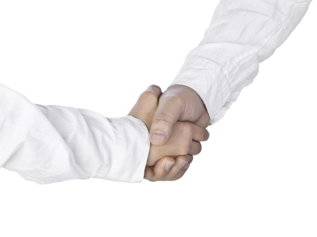 Close up image of two people doing a shake hands Stock Photo - 16210952