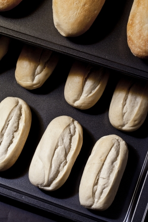 Close up image of fresh baked buns on tray Stock Photo - 16211133