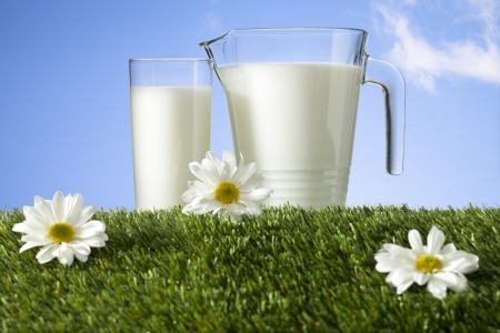 Image of glass and jar of milk on green grass with flowers Stock Photo - 16212441