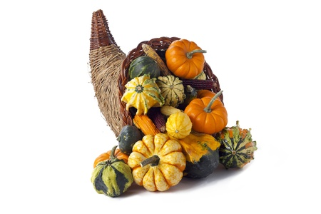 Cornucopia of gourds on white  photo