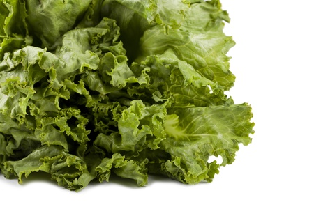 Close up image of green lettuce against white background Фото со стока