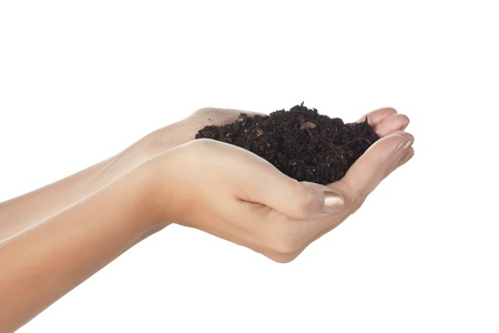 Close up image of hand full of soil against white background Stock Photo - 16225745