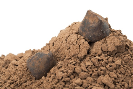 Horizontal image of a cocoa powder with chocolate truffles Reklamní fotografie