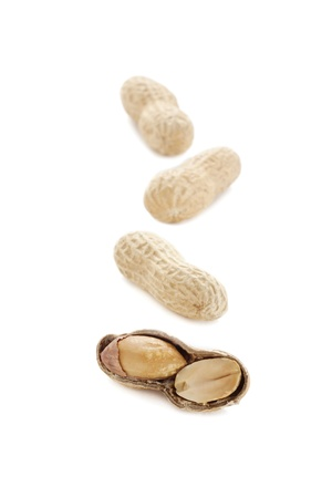monkey nuts: Vertical image of four ground nuts isolated on a white background Stock Photo