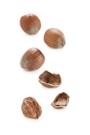 A group of brown hazelnuts isolated over the white background Stock Photo - 16962923