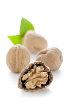 Vertical image of a cracked walnut with blurred walnuts and leaves in the background Stock Photo - 16963144