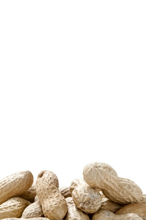 Portrait image of a group of monkey nuts against white background Stock Photo - 16963516