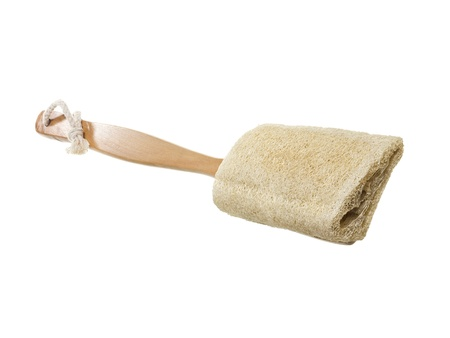 fibrous: Loofah sponge with wooden handle over a white background