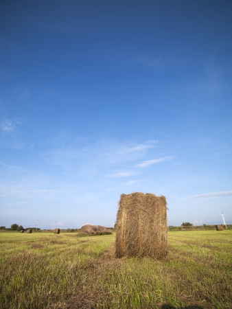Hay bale in field with blue sky in the background. Stock Photo - 16977286