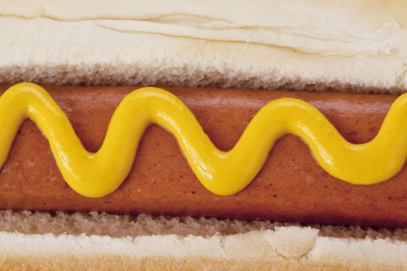 Close up image hat dog sandwich with mustard against white background photo