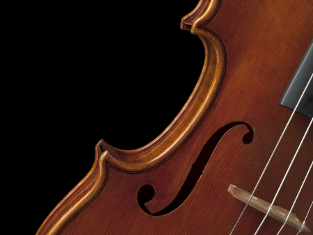 Close-up cropped shot of bridge of old wooden violin against dark background. photo