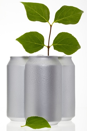 Green leaves on a branch coming out of a can to remind people to recycle and be eco friendly