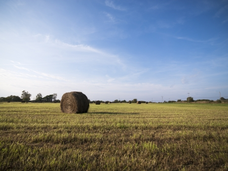 View of hay bale in a field with blue sky in the background. Stock Photo - 16973567